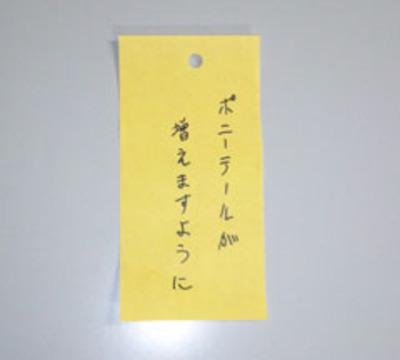 2011_0708_2_2