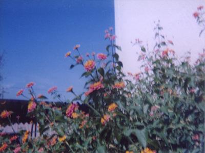2010_0301_01