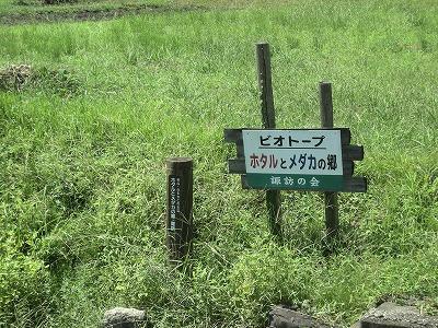 2010_0927_6